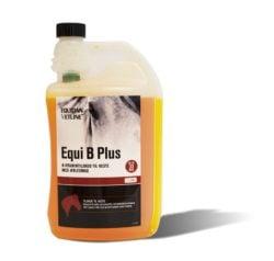 EquiB-Plus