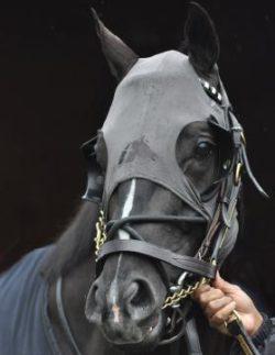 fenwick-maske-grå