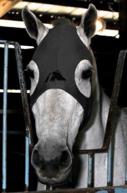 fenwick maske sort