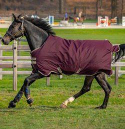horseware-amigo-hero-ripstop