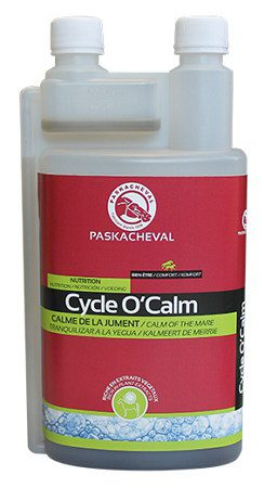 Paskacheval Cycle O'Calm