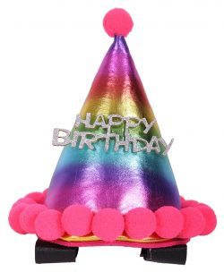 fødselsdags hat hest